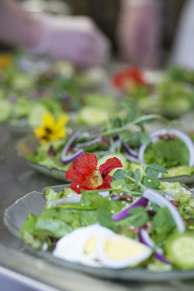 close up photo of salad on plates